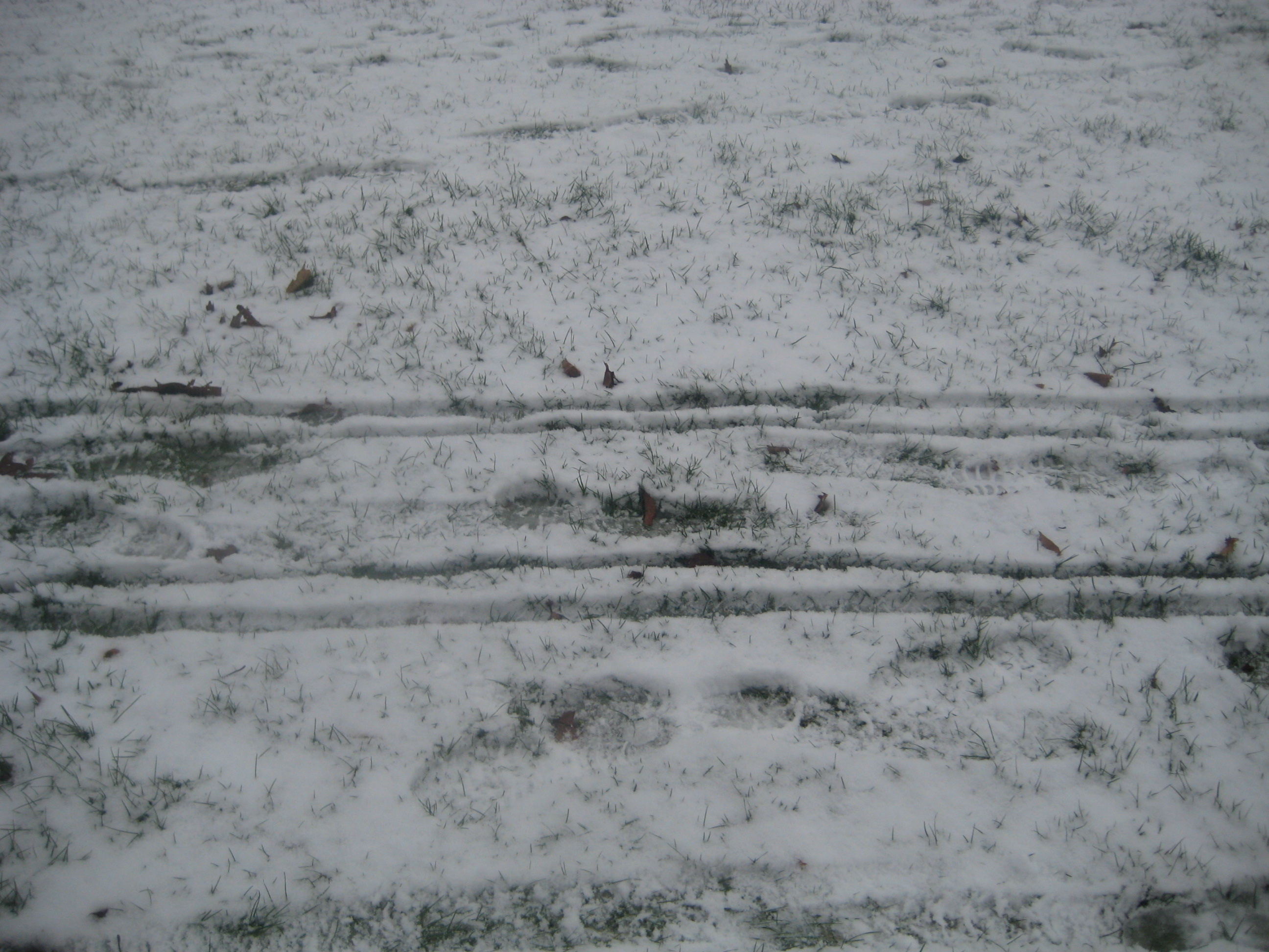 Oh NO!  His foot prints are all over these sleigh tracks.  I hope he didn't eat Santa.