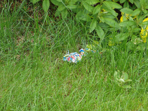 A discarded toy.